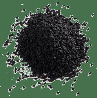black_cumin_seed_u03mna